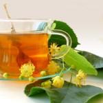 Faktai apie arbata